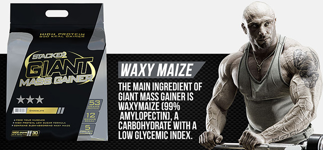 Stacker2 Giant Mass Gainer Detail 2